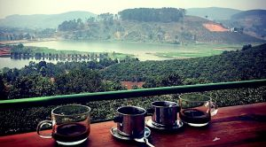 Da Lat Coffee Plantation Motorbike Tour flexi