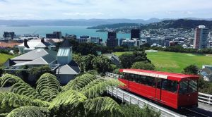 Wellington cable car harbour