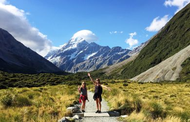 Sheppard Journeys Summer Stray NZ3