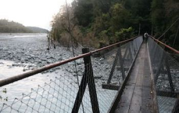 franz josef callery gorge bridge thumb