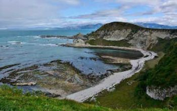 kaikoura peninsula walkway shellie evans gallery